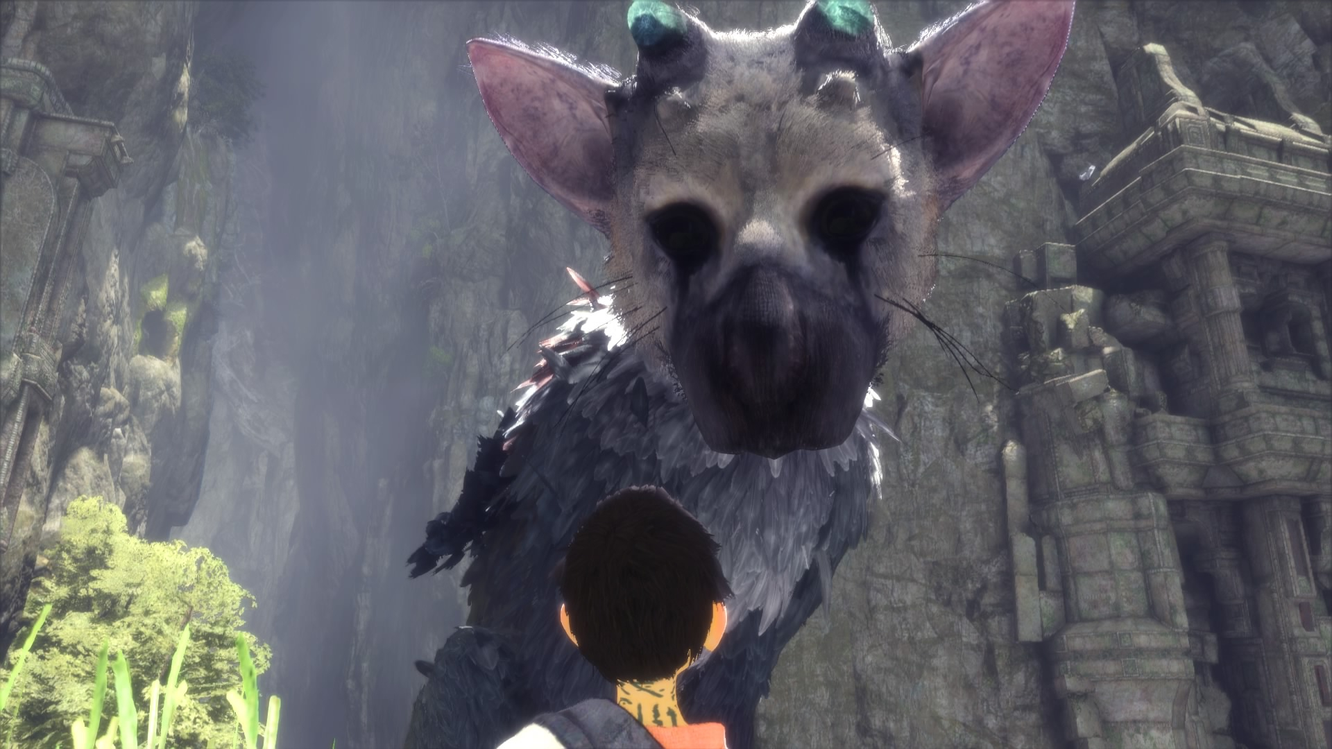Trico and The Boy chilling